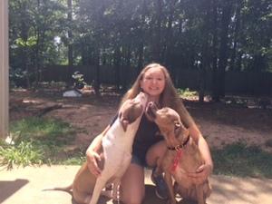 Taylor K9 Dog Trainer